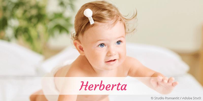 Name Herberta als Bild