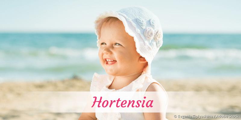 Name Hortensia als Bild