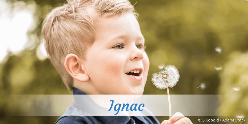 Name Ignac als Bild