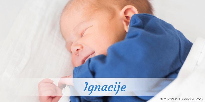 Name Ignacije als Bild