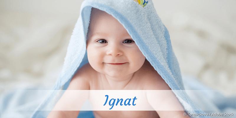 Name Ignat als Bild