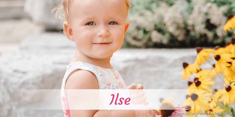 Name Ilse als Bild