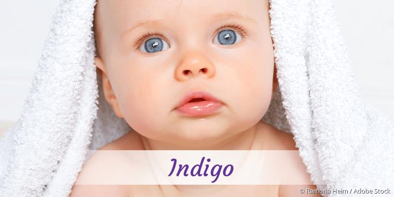 Name Indigo als Bild