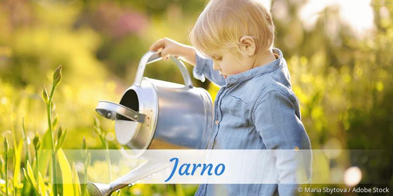 Name Jarno als Bild