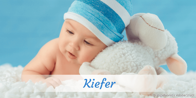 Name Kiefer als Bild