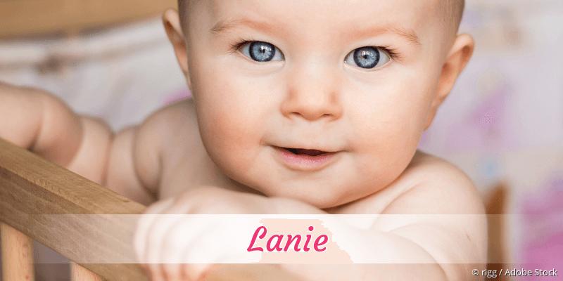 Name Lanie als Bild
