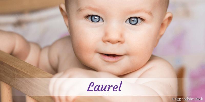Name Laurel als Bild