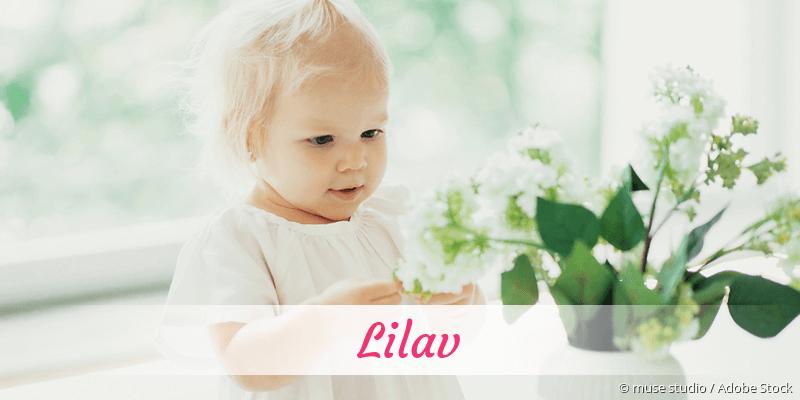 Name Lilav als Bild