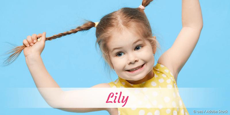 Name Lily als Bild