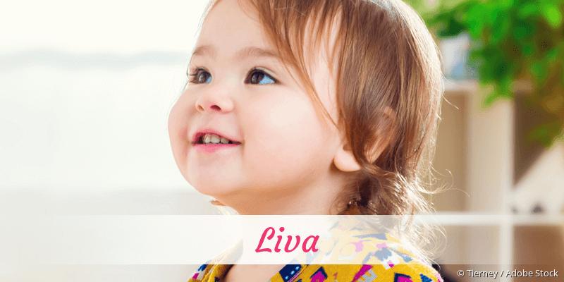 Name Liva als Bild