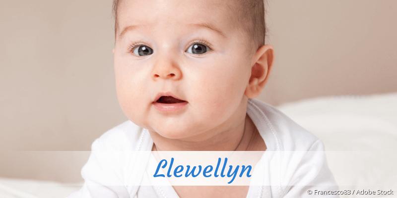 Name Llewellyn als Bild