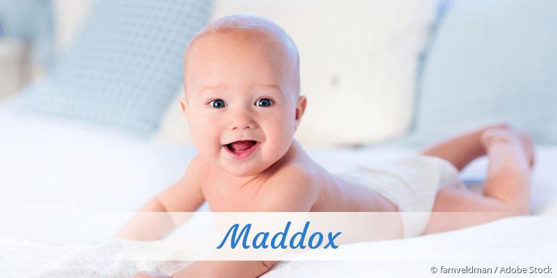 Name Maddox als Bild