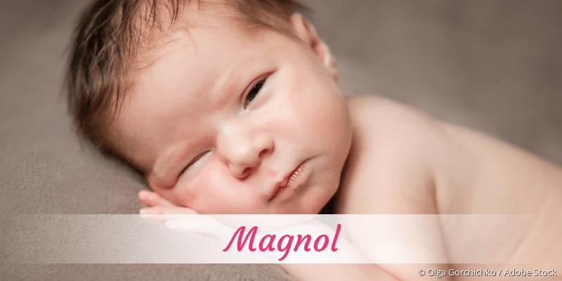 Name Magnol als Bild