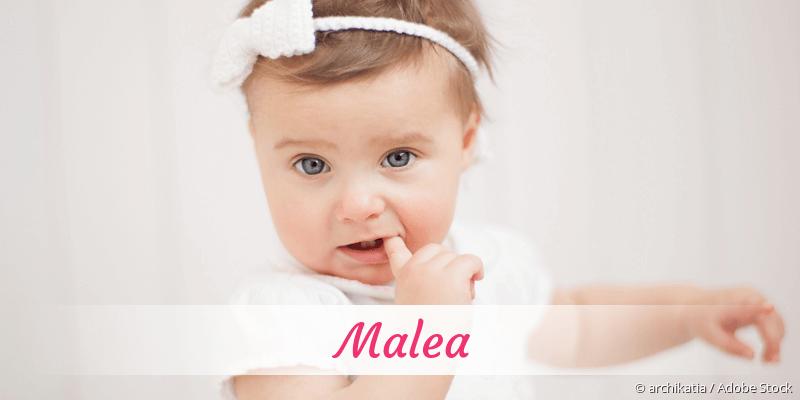 Name Malea als Bild