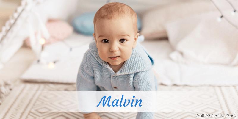 Name Malvin als Bild