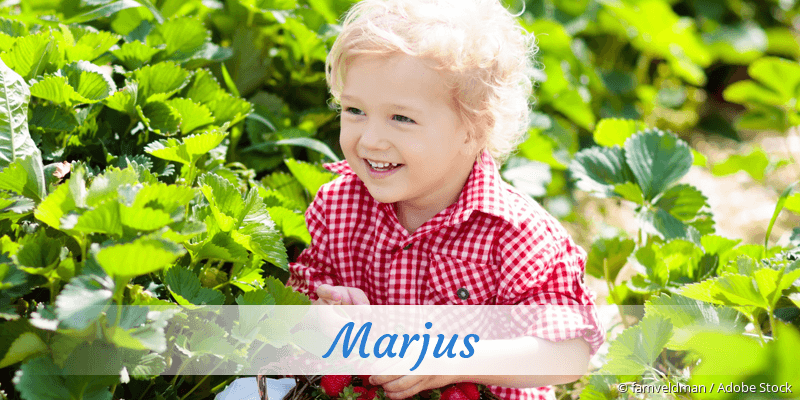 Name Marjus als Bild