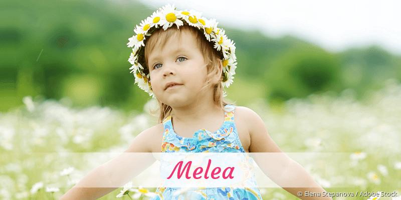 Name Melea als Bild