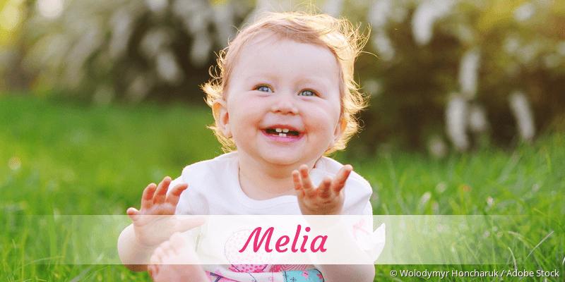 Name Melia als Bild