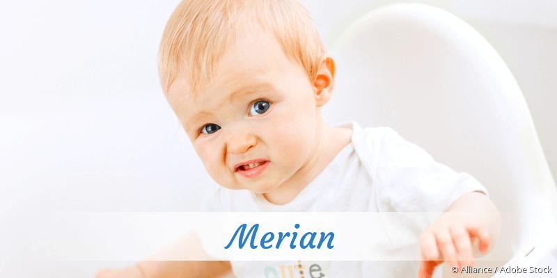 Name Merian als Bild