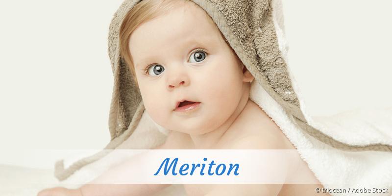 Name Meriton als Bild