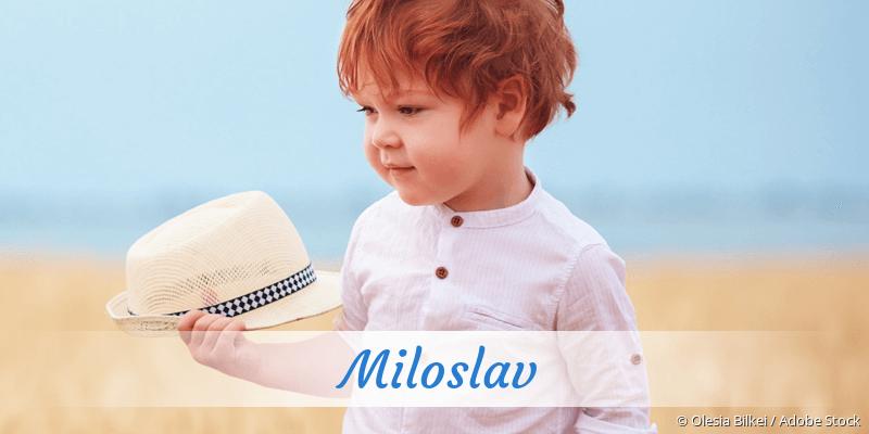 Name Miloslav als Bild