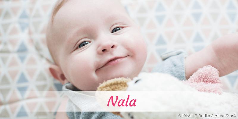 Name Nala als Bild