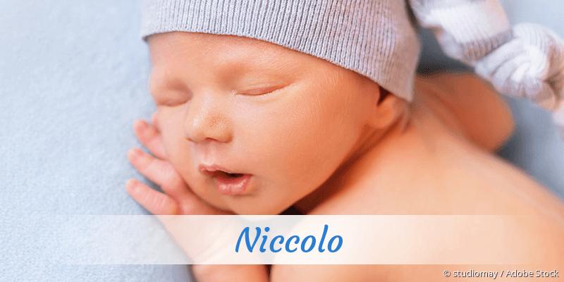 Name Niccolo als Bild