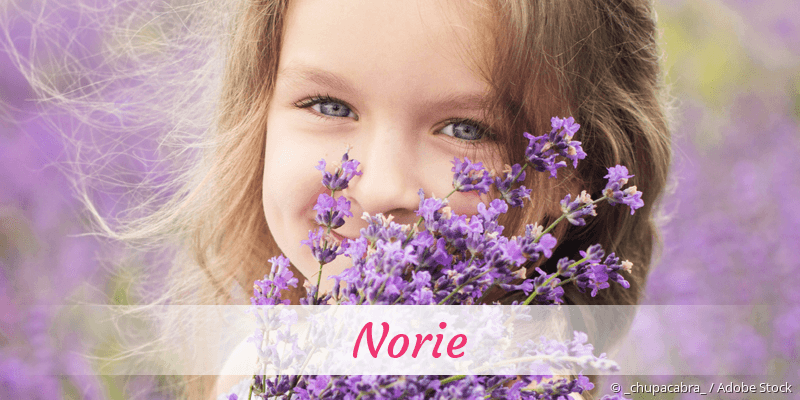 Name Norie als Bild