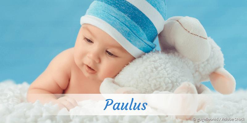 Name Paulus als Bild