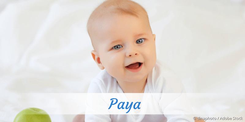 Name Paya als Bild