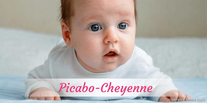 Name Picabo-Cheyenne als Bild