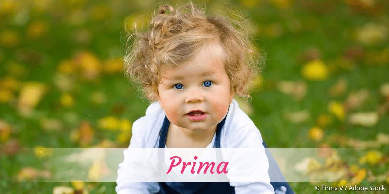 Name Prima als Bild
