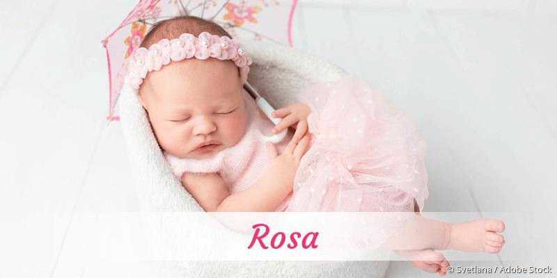 Name Rosa als Bild