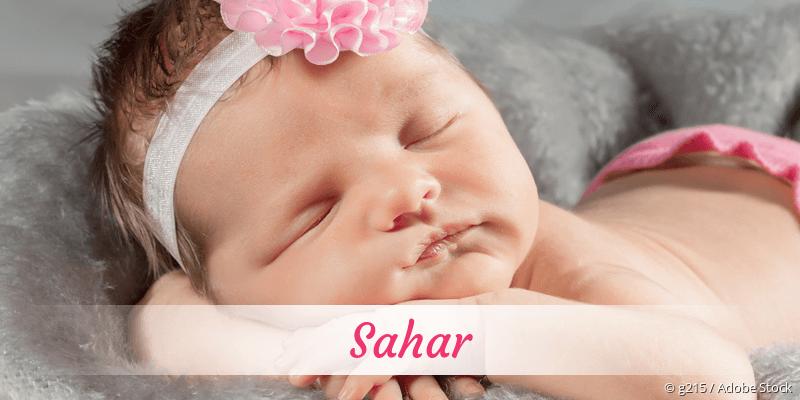 Name Sahar als Bild