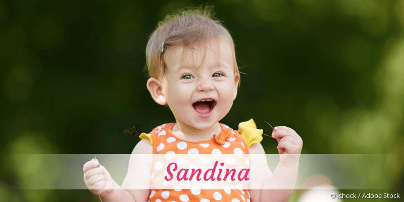 Name Sandina als Bild