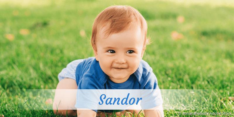 Name Sandor als Bild