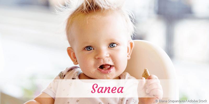 Name Sanea als Bild