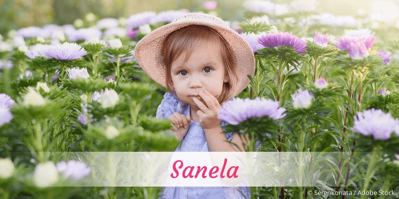 Name Sanela als Bild