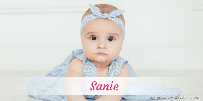 Name Sanie als Bild