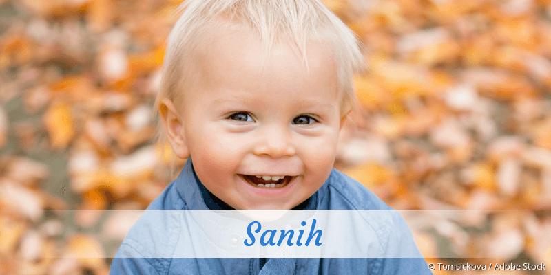 Name Sanih als Bild