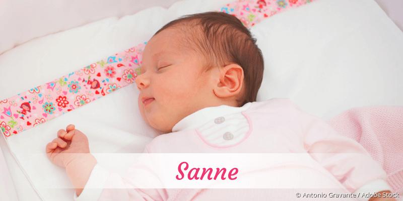 Name Sanne als Bild
