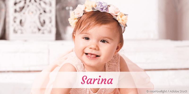 Name Sarina als Bild