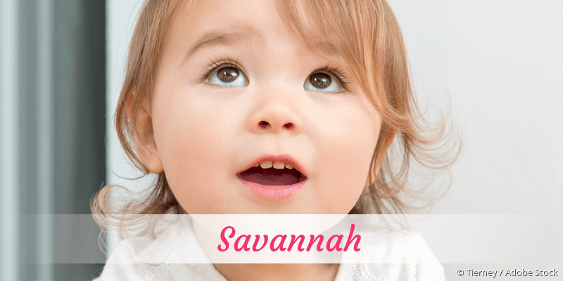 Name Savannah als Bild