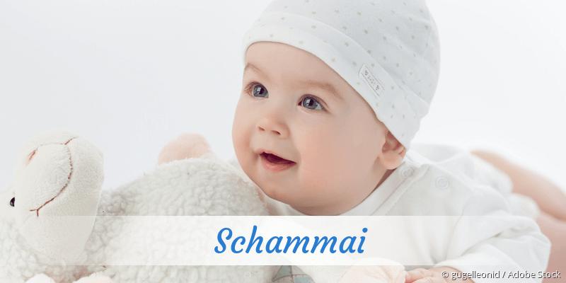 Name Schammai als Bild