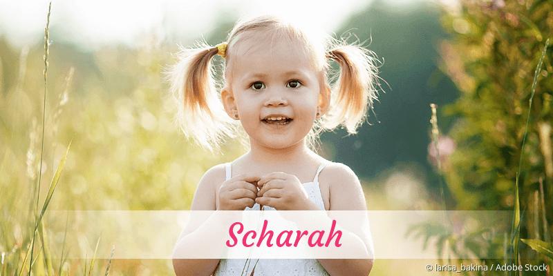 Name Scharah als Bild