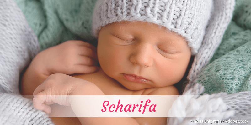 Name Scharifa als Bild