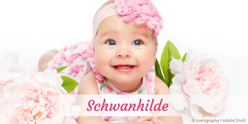 Name Schwanhilde als Bild