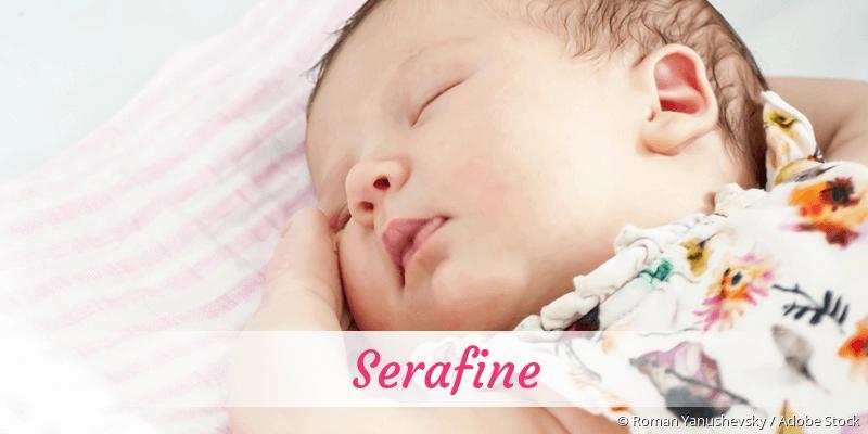 Name Serafine als Bild