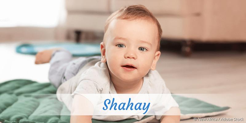 Name Shahay als Bild