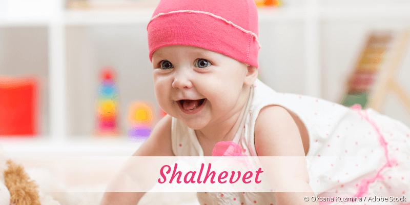 Name Shalhevet als Bild